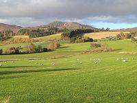 FootFall-GreatWalksinPerthshire
